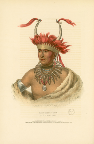 Gravure : Otto Half Chief.<br><i>History of the Indian tribes of North America<br></i>© Bibliothèque municipale de Grenoble<br>