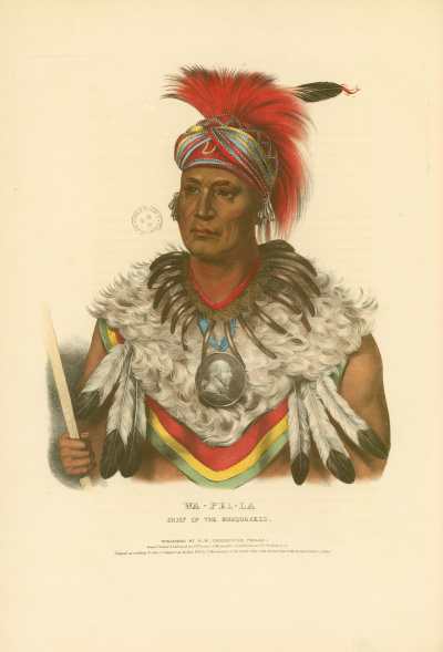 Gravure : Chief of the Musquakees.<br><i>History of the Indian tribes of North America<br></i>© Bibliothèque municipale de Grenoble
