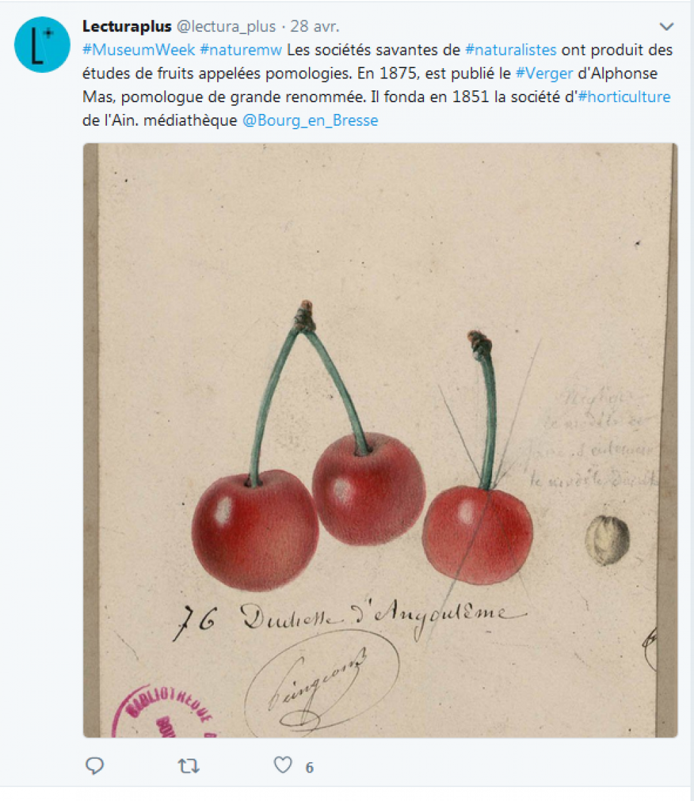 Capture d'écran, tweet de Lectura Plus, samedi 28 avril 2018, #MuseumWeek #NatureMW.